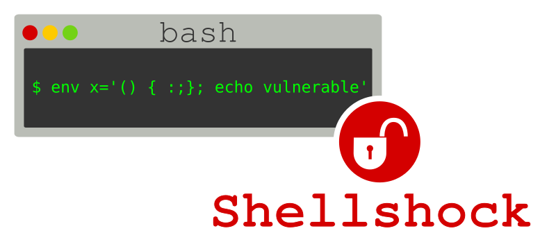 ShellShock, What I've Understood